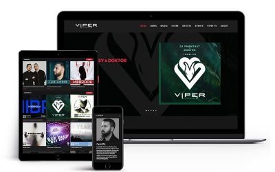 Viper Recordings Website is Live!
